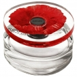 Kenzo Flower In The Air Eau De Parfum Vaporisateur 100ml