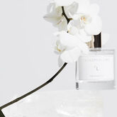 Zarko E'L Eau De Parfum Spray 100ml