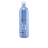 Broaer B2 Silver Color Champú 250ml