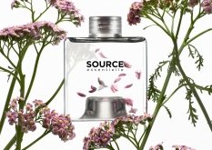 Pre-order Source Essentielle L'Oreal exclusively in the US