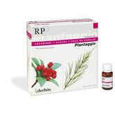 Dherbos Plantaggio Rp 20 Viales